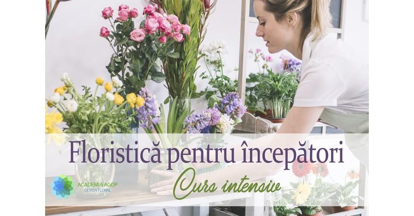 Curs intensiv - Grupa Gladiolus
