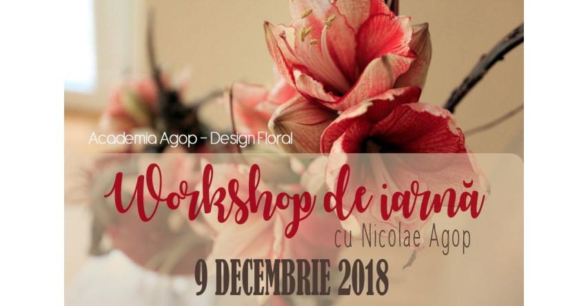 Workshop de iarnă