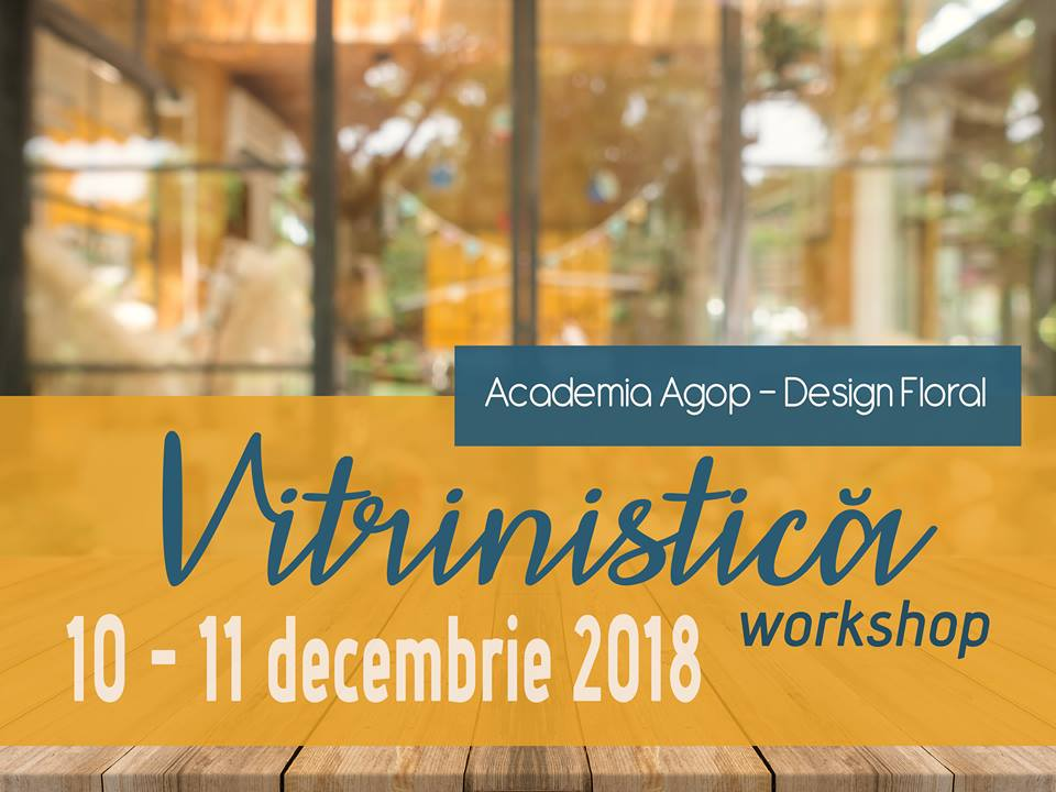 Vitrinistică - workshop