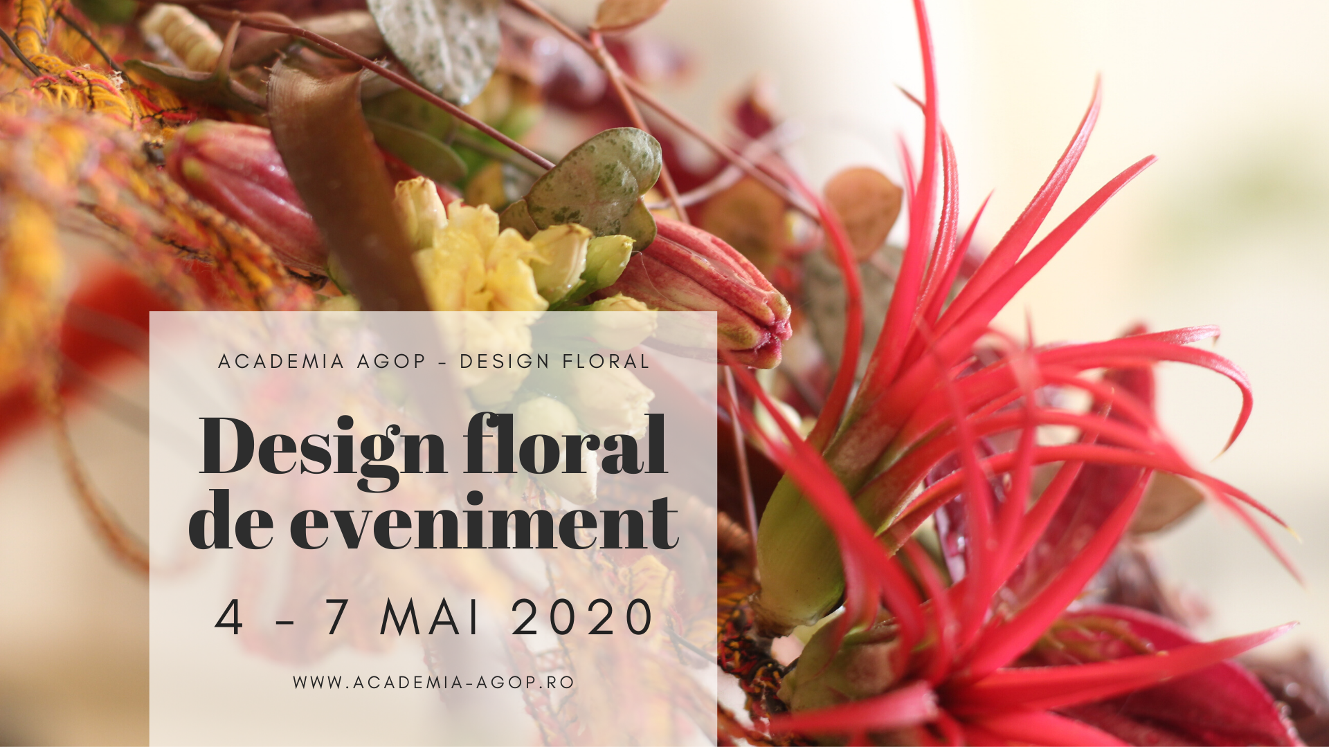 Modulul V: Design floral de eveniment 4 - 7 Mai 2020