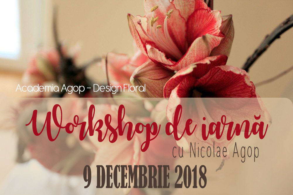 Workshop de iarnă